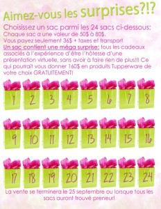 sacs-cadeaux_Caro-648x838