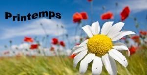 saison-printemps